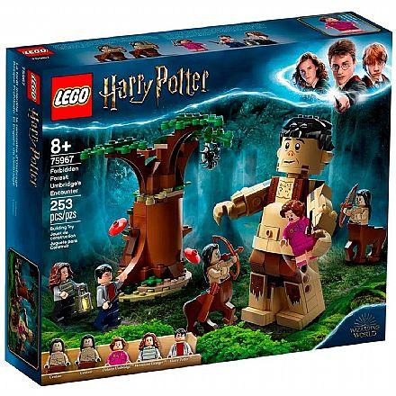 LEGO Harry Potter - A Floresta Proibida: O Encontro de Grope e Umbridge - 75967
